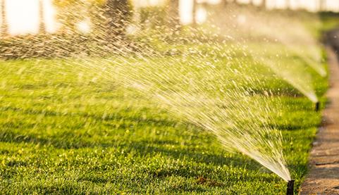 水肥一体化VS传统灌溉施肥